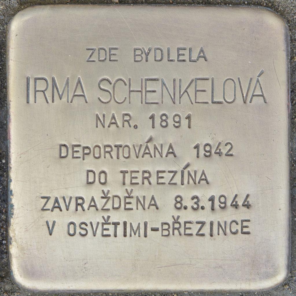 Kameny zmizelých Irma Schenkelová