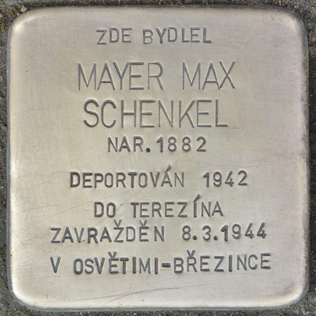 Kameny zmizelých - Mayer Max Schenkel
