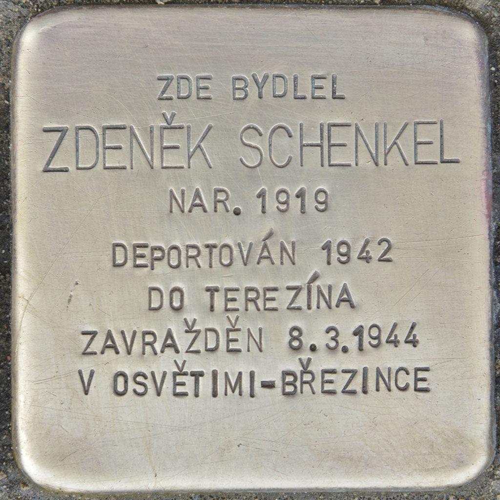 Kameny zmizelých - Zdeněk Schenkel